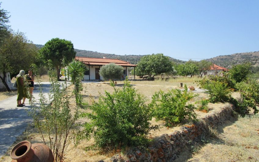 Nyfida – Bungalow for sale with one acre of prime land 150m from sea