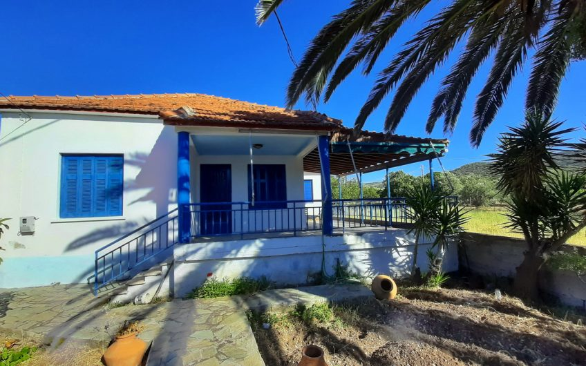 front house for sale nyfida