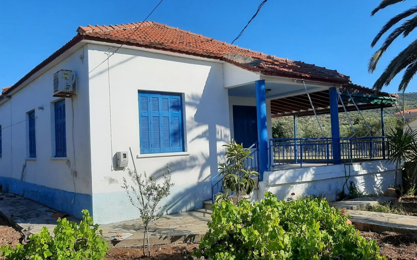 Spacious house for sale close to Nyfida and the sea