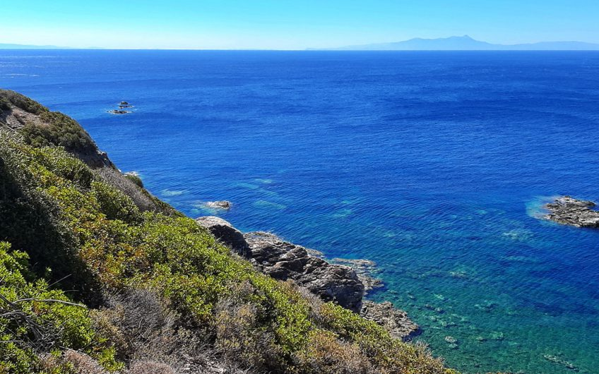 Agios Focas, For sale 6816m2 seafront plot overlooking the Aegean